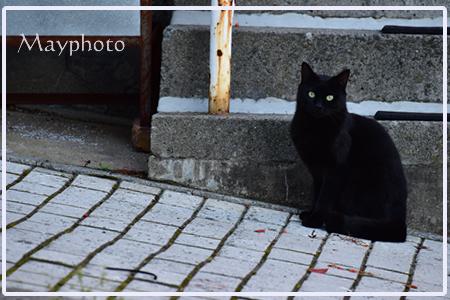 b201110_3.jpg